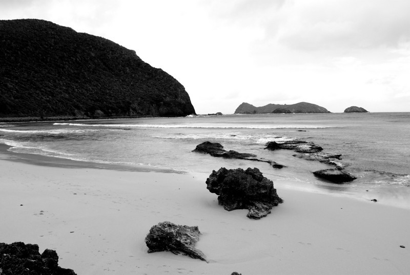Lord Howe20080508 143833 b&w.jpg