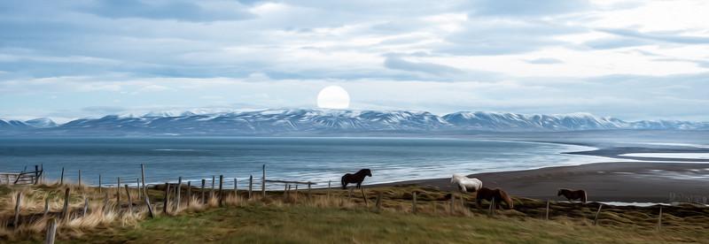 Iceland_Hvítserkur_FULLMOON_Horses_PAINT_HR.jpg