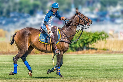 2017 Okanagan Polo Club Tournament