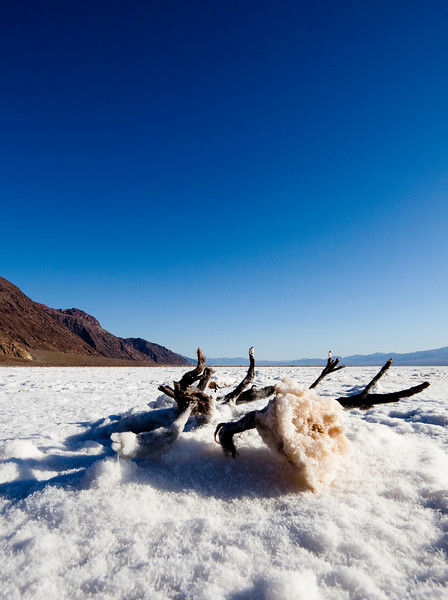 salt-bad-water-death-valley.jpg