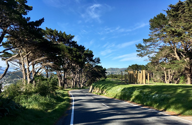 Mt Vic downhills are still as fun as I remember