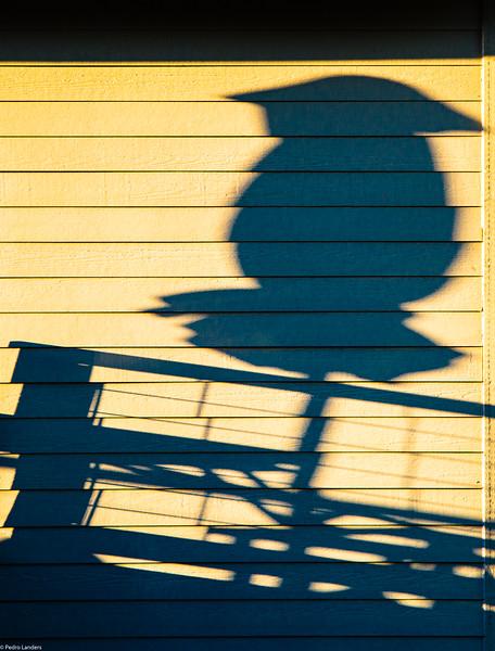 Sunshade.jpg