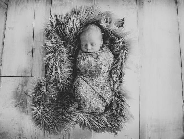 Briggs Williams Newborn 2018