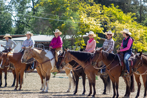 SMCHA Ranch Horse Versatility 2018