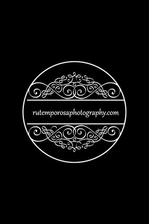 Styled Photo Shoots