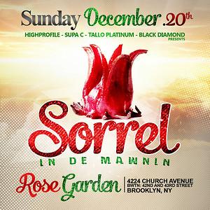 12/20/15 Sorrel In De Mawnin