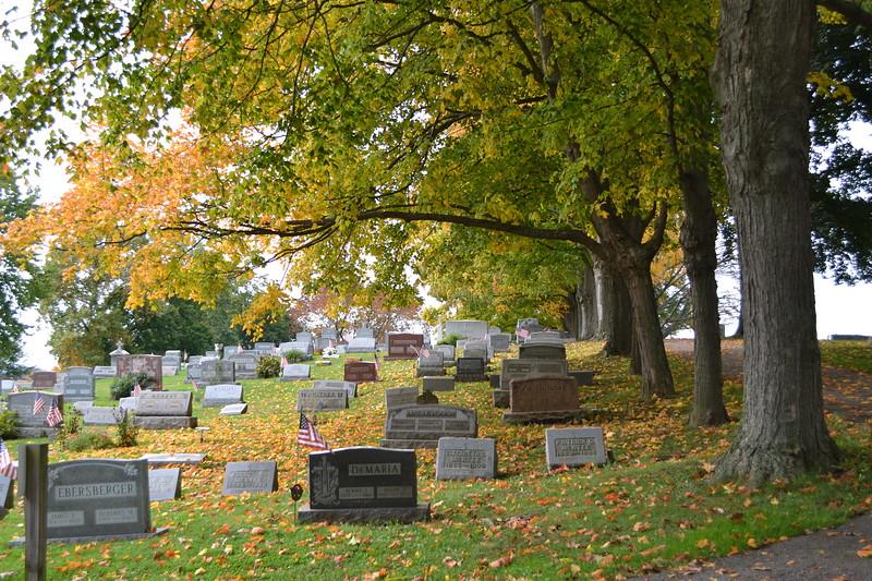 2012 Fall around campus (15).JPG