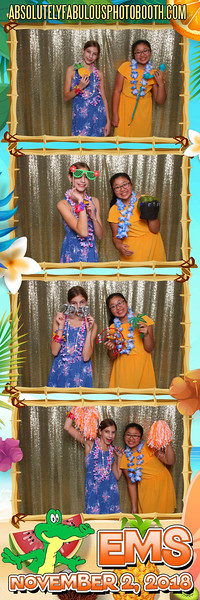 Absolutely Fabulous Photo Booth - (203) 912-5230 -181102_203141.jpg