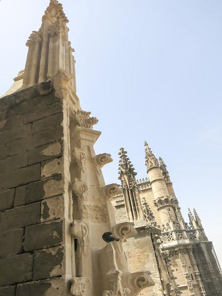 Spain 2012-1340.jpg