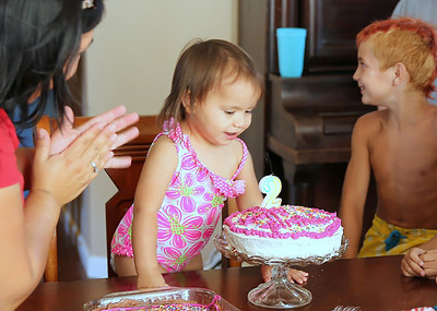 2013 - Sophia's 2nd Birthday Party
