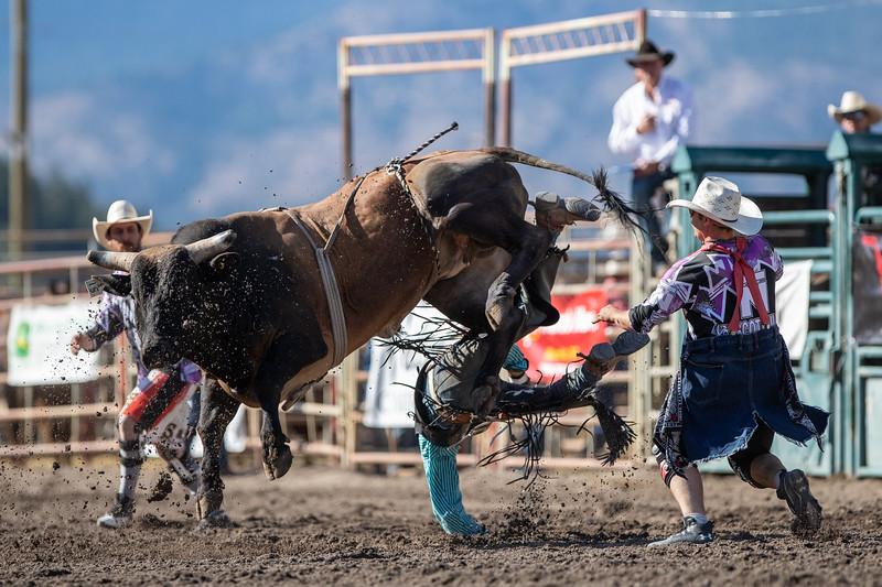 2019 Rodeo 3 (1230 of 1306).jpg