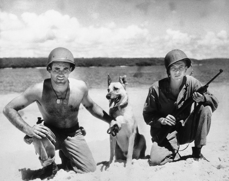 . Jack, a three year old Belgian shepherd has been officially commended for carrying an important message under attack and for wounds in action he also saved the life of one of his handlers. His handlers are Prc. Paul J. Castracane and Gordon J. Wortman shown Jan. 23, 1944. (AP Photo)