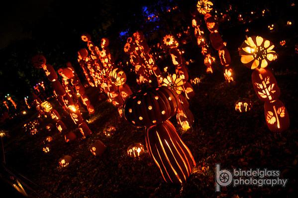 The Great Jack O'Lantern Blaze 2013