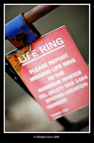 Lifesaver (68550978).jpg