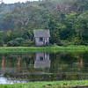 Cranberry bog pump house, Cape Cod