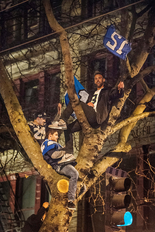 . Seattle Seahawks fans perch in a tree as they celebrate their team\'s 43-8 victory over the Denver Broncos in Super Bowl XLVIII in downtown Seattle, Washington, USA, 02 February 2014.  EPA/DAN LEVINE
