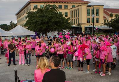 Pink on Parade Celebration Hosp 2014