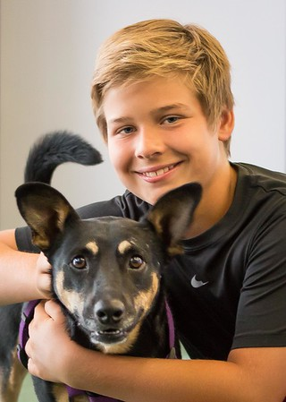 Dogs with New Families