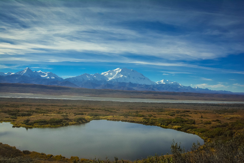 Denali-National-Park-118.jpg