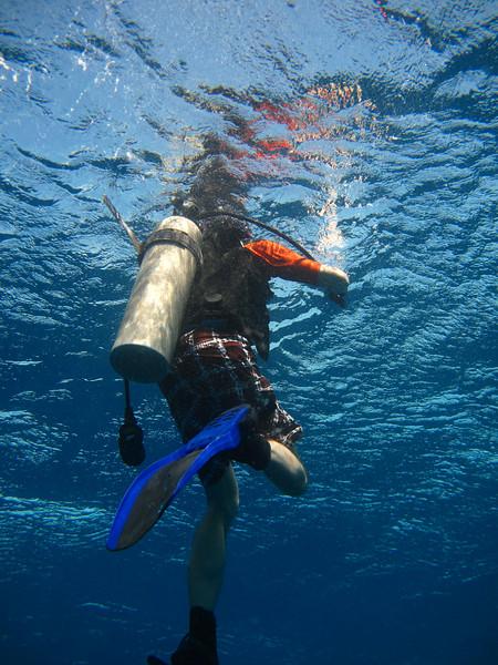 brent surfacing from below.jpg