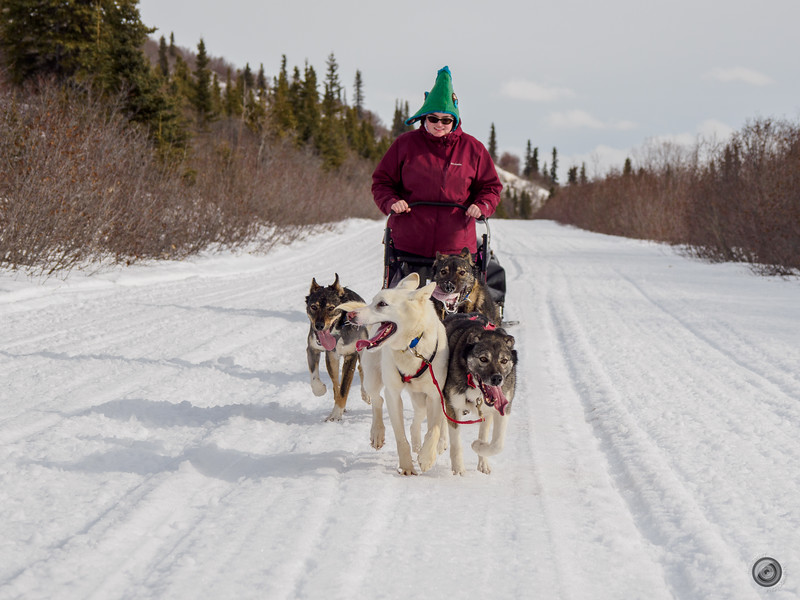 20190325_Blaire_and_Liz_Mushing_11.jpg