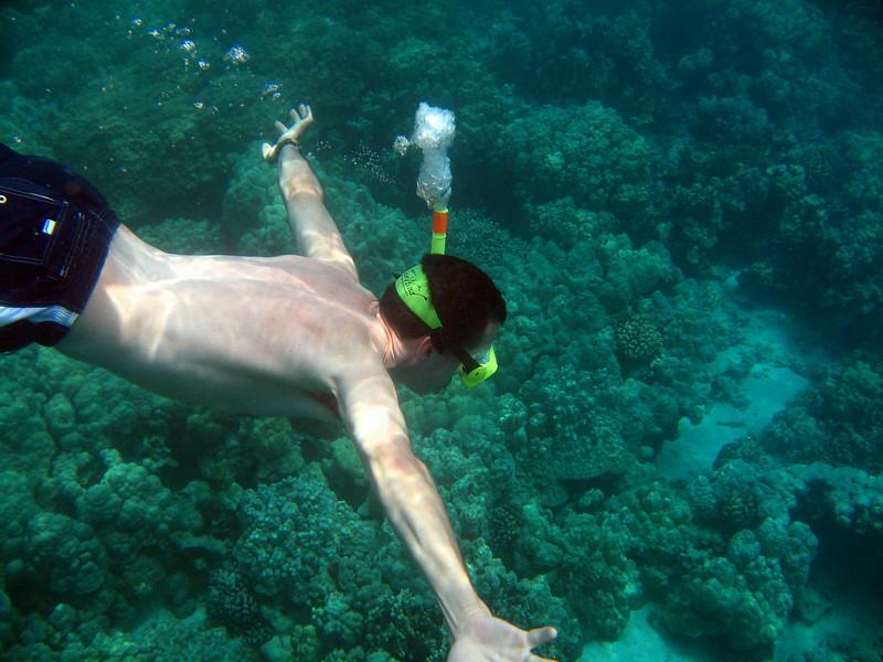 417- 20080416- Hawaii 20-Snorkelling IMG_0556.jpg