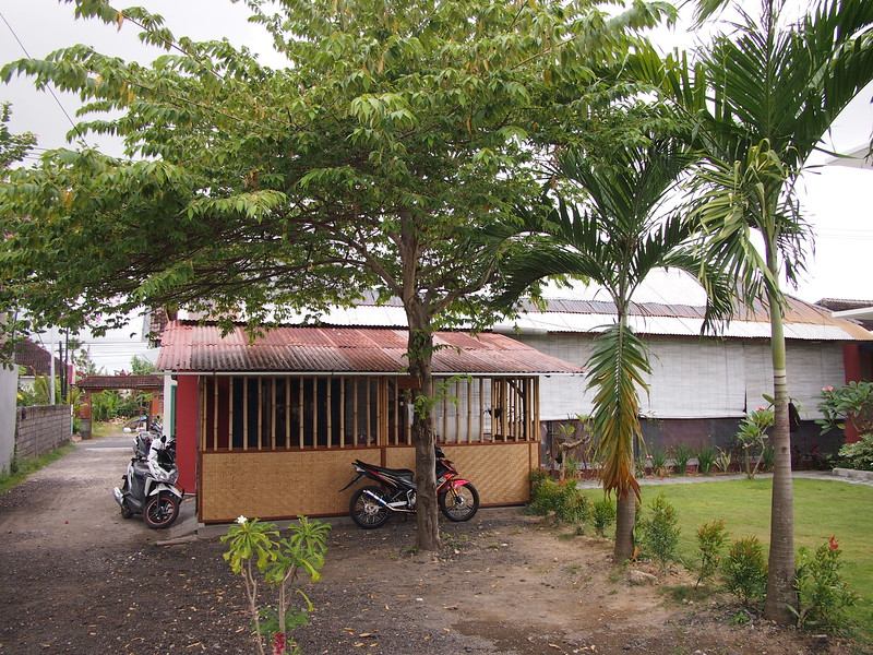 P3140831-canggu-stay-garden.JPG