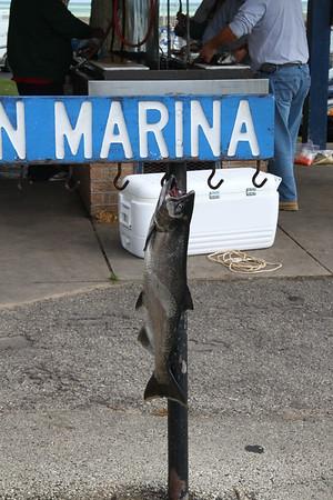 Port Washington 2010