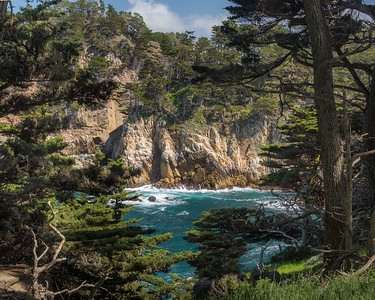 Garrapata State Park and Point Lobos Natural Reserve