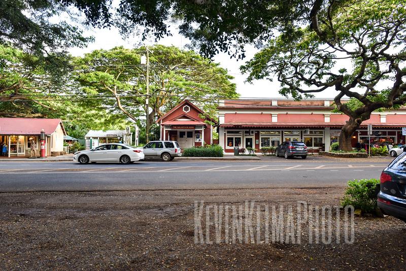 Kauai2017-339.jpg
