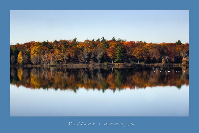 Reflect-3.jpg