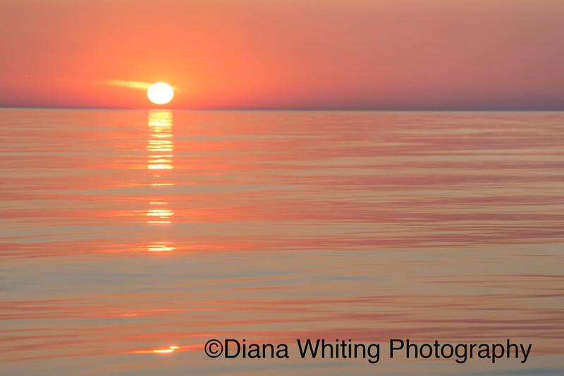 Lake Ontario July