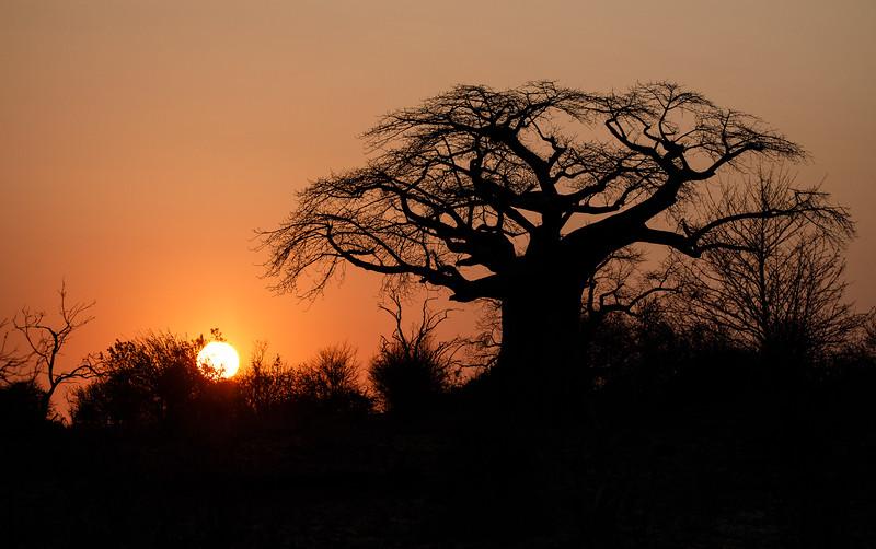 Botswana_0818_PSokol-4531.jpg