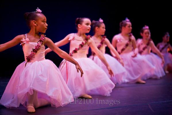 05 Rosebud Princess Fairies Set B: CD I & II