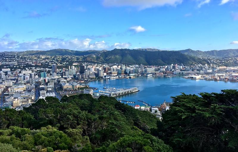 Wellington on a good day!