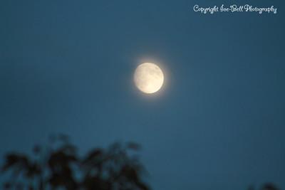 2011 Moon