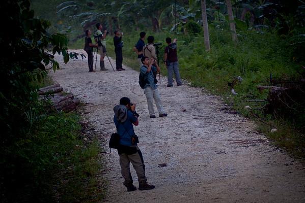Forest Evaluation and Bird Exploration in Bislig City