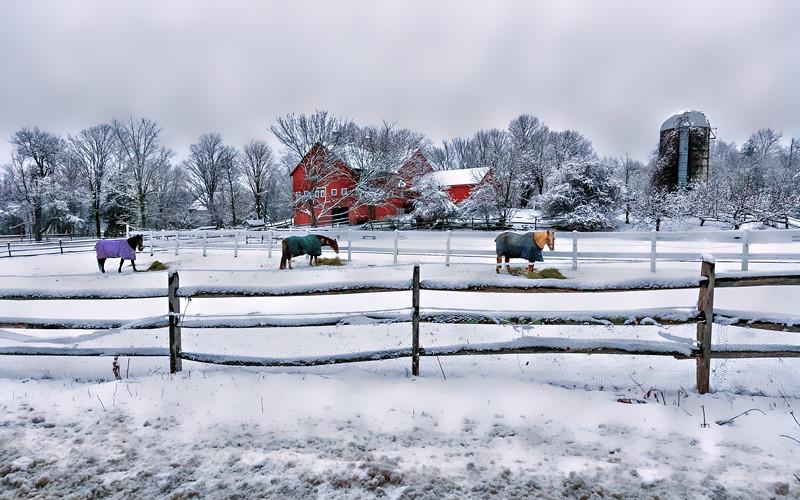 pepperell MA, farm-3.jpg