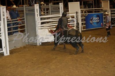 Bull Riding Sat 12th