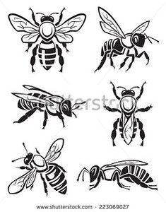 939ddaf8f552aa9344197ebc88136bc7--bee-drawing-vintage-bee.jpg