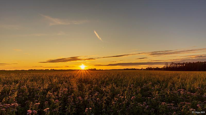 Sunset_27156a.jpg