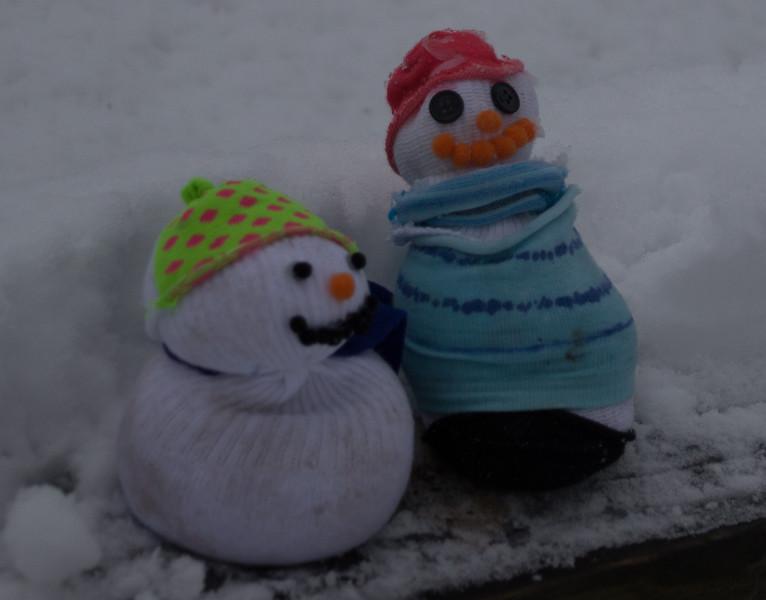 sdc-winter-20200118-1626-IMG_4136.jpg