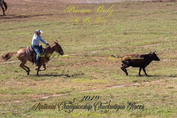 Saturday Pasture Roping