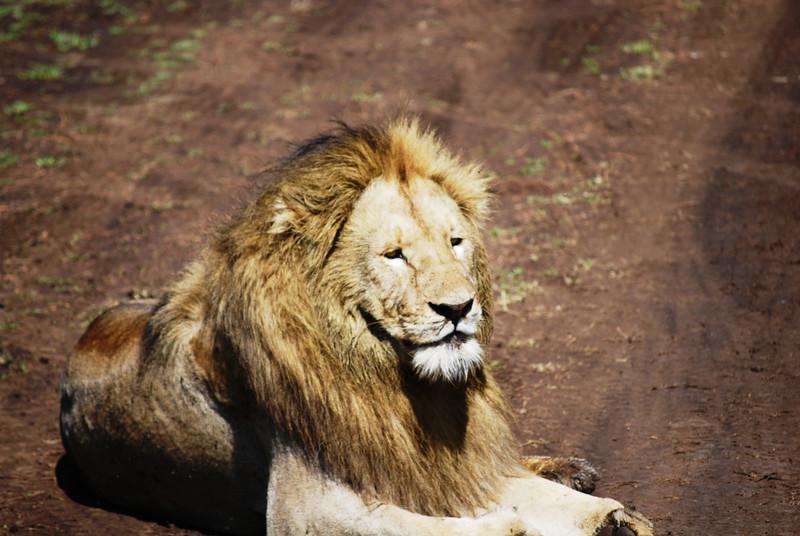 Ngorongoro (123).JPG
