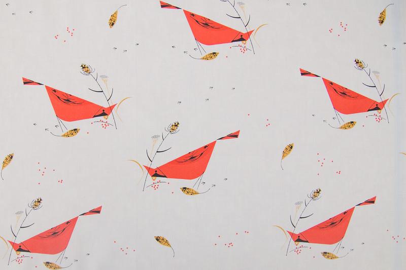Birch Fabrics-3-2.jpg