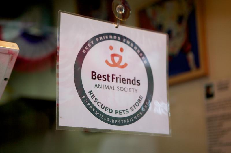 BestFriends_PAWrade_IMG_4161.jpg