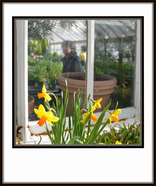 2018-02-17 Northampton Smith College Art Museum V(33) Flowers Window Sandy Mom
