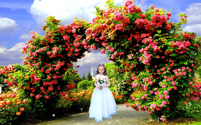 Garden-Wallpapers-37-2560-x-1600a.jpg