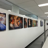 With a total of 30 pieces in the Banner UMC surgical admin hallway, both sides of the long corridor are lined iwth powerful and modern images that bring life to the otherwise sterile environment. The gallery serves multiple purposes: to visually entertain and educate the viewer about the Surgery Dept. and to honor the skilled men and women who save lives each day.
