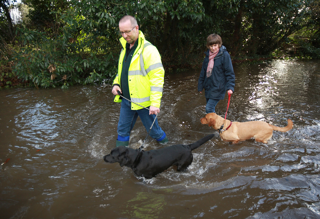 . Residents walk their dogs through flood water on February 11, 2014 in Wraysbury England. The Environment Agency has issued severe flood warnings for a number of areas on the river Thames west of London.  (Photo by Peter Macdiarmid/Getty Images)